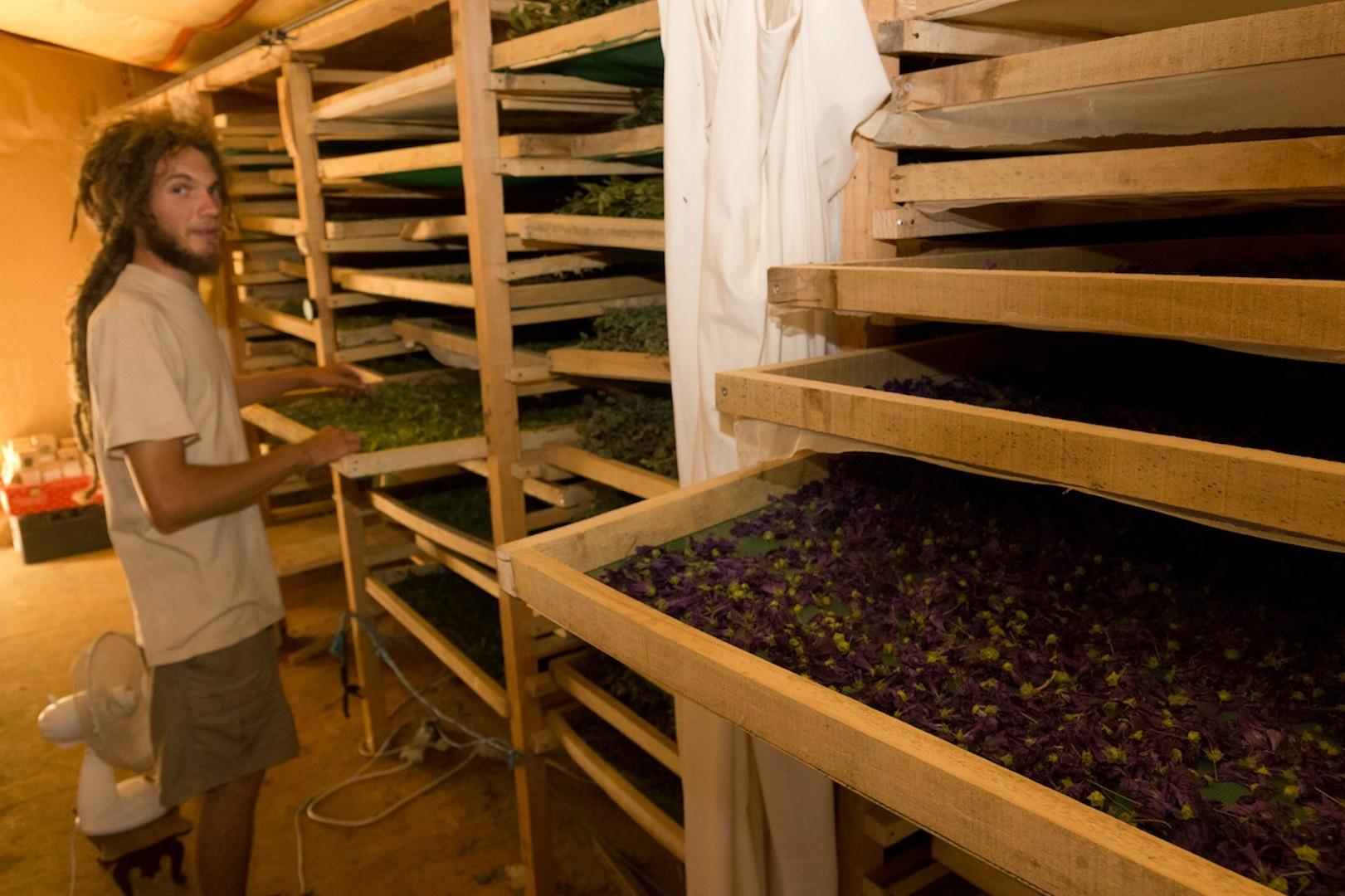 Commerces artisans entreprises vezins de l v zou for Le jardin 21 rue de la federation